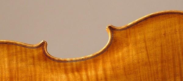 Violin-8-Back-001-2400x663