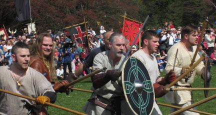 vikingirishpic